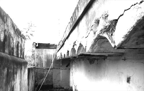 Archivo-6